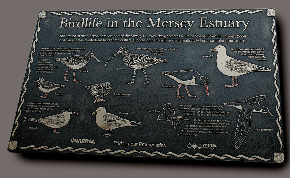 Cast_Bronze_Interpretation_Panel_Mersey_Estuary_2